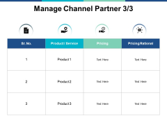 Manage Channel Partner Planning Ppt PowerPoint Presentation Layouts Information