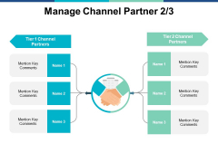 Manage Channel Partner Strategy Ppt PowerPoint Presentation Portfolio Example