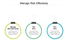 Manage Risk Effectively Ppt PowerPoint Presentation File Elements Cpb