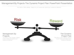 Management By Projects The Dynamic Project Plan Powerpoint Presentation