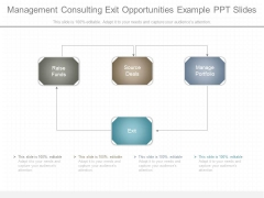 Management Consulting Exit Opportunities Example Ppt Slides