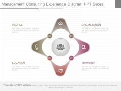 Management Consulting Experience Diagram Ppt Slides