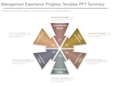 Management Experience Progress Template Ppt Summary