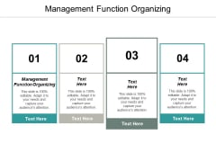 Management Function Organizing Ppt PowerPoint Presentation Slides Master Slide Cpb
