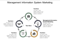 Management Information System Marketing Ppt PowerPoint Presentation Examples Cpb