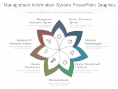 Management Information System Powerpoint Graphics