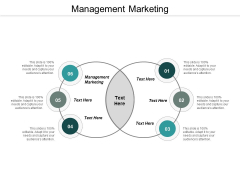 Management Marketing Ppt PowerPoint Presentation Icon Format Cpb