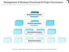 Management Of Business Functional And Project Governance Ppt Powerpoint Presentation Infographics Layout