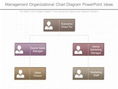 Management Organizational Chart Diagram Powerpoint Ideas