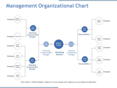 Management Organizational Chart Ppt PowerPoint Presentation Portfolio Icon