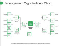 Management Organizational Chart Ppt PowerPoint Presentation Summary Gallery