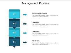 Management Process Ppt PowerPoint Presentation Portfolio Slides Cpb