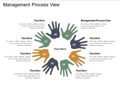 Management Process View Ppt PowerPoint Presentation Pictures Show Cpb