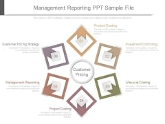 Management Reporting Ppt Sample File
