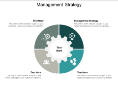 Management Strategy Ppt PowerPoint Presentation Layouts Objects Cpb