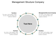 Management Structure Company Ppt PowerPoint Presentation Professional Structure Cpb