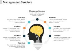Management Structure Ppt PowerPoint Presentation File Show Cpb