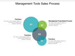 Management Tools Sales Process Ppt PowerPoint Presentation Pictures Gallery Cpb