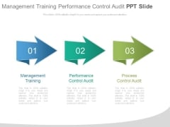 Management Training Performance Control Audit Ppt Slide