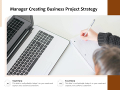 Manager Creating Business Project Strategy Ppt PowerPoint Presentation Portfolio Guidelines PDF