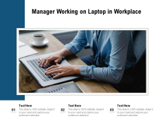 Manager Working On Laptop In Workplace Ppt PowerPoint Presentation Infographics Themes PDF