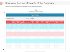 Managing CFO Services Managing Accounts Payable Of The Company Diagrams PDF
