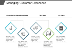 Managing Customer Experience Ppt Powerpoint Presentation Icon Shapes Cpb
