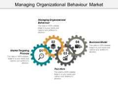 Managing Organizational Behaviour Market Targeting Process Business Model Ppt PowerPoint Presentation Professional Portfolio