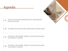Market Assessment Agenda Ppt Infographics Example File PDF