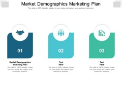 Market Demographics Marketing Plan Ppt PowerPoint Presentation Professional Rules Cpb Pdf