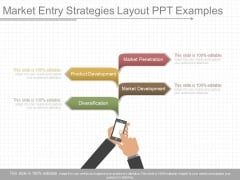 Market Entry Strategies Layout Ppt Examples