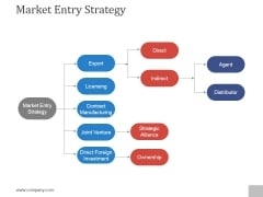 Market Entry Strategy Ppt PowerPoint Presentation Graphics