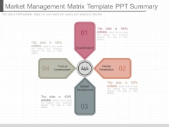Market Management Matrix Template Ppt Summary