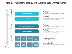 Market Positioning Behavioral Derived And Demographic Ppt PowerPoint Presentation Ideas Gridlines