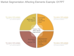 Market Segmentation Affecting Elements Example Of Ppt