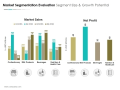 Market Segmentation Evaluation Segment Size And Growth Potential Ppt PowerPoint Presentation Icon Master Slide