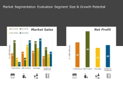 Market Segmentation Evaluation Segment Size And Growth Potential Ppt PowerPoint Presentation Outline Example
