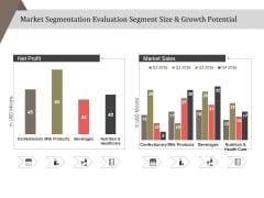 Market Segmentation Evaluation Segment Size And Growth Potential Ppt PowerPoint Presentation Styles Demonstration