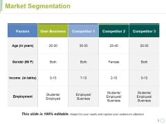 Market Segmentation Ppt PowerPoint Presentation Summary Visuals