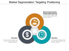 Market Segmentation Targeting Positioning Ppt PowerPoint Presentation Layouts Microsoft Cpb