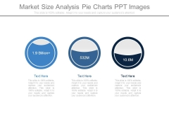 Market Size Analysis Pie Charts Ppt Images