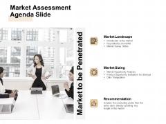 Market Sizing Market Assessment Agenda Slide Ppt Pictures Icon PDF
