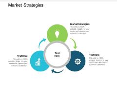 Market Strategies Ppt PowerPoint Presentation Infographics Format Cpb
