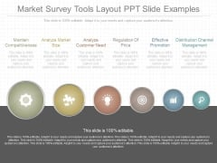 Market Survey Tools Layout Ppt Slide Examples
