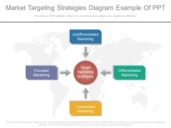 Market Targeting Strategies Diagram Example Of Ppt