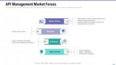 Market Viewpoint Application Programming Interface Governance API Management Market Forces Mockup PDF