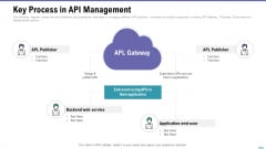 Market Viewpoint Application Programming Interface Governance Key Process In API Management Mockup PDF