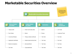 Marketable Securities Overview Ppt PowerPoint Presentation Gallery Demonstration