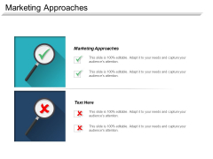 Marketing Approaches Ppt PowerPoint Presentation Summary Model Cpb