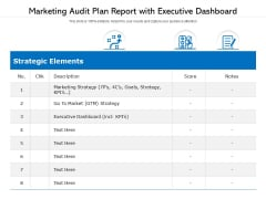 Marketing Audit Plan Report With Executive Dashboard Ppt PowerPoint Presentation File Designs Download PDF